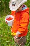 Muchacho con un cubo de bayas y de flor Imagen de archivo libre de regalías