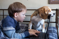 Muchacho con un ordenador portátil y un beagle Fotografía de archivo
