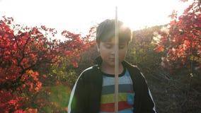 Muchacho con una espada de madera en sus manos en el fondo del paisaje del otoño almacen de metraje de vídeo