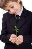 Muchacho con una pequeña planta verde Foto de archivo libre de regalías