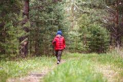 Muchacho de cinco años alegre en un casquillo y abajo una chaqueta calientes que corren a través del bosque foto de archivo libre de regalías