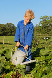 Muchacho de granja con la regadera en huerto Imagen de archivo