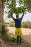 Muchacho de los granjeros con el manojo de plátanos Imagenes de archivo