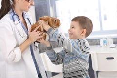 Muchacho de risa que consigue el conejo posterior de veterinario Foto de archivo
