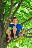 Muchacho de seis años que sube un árbol niño para arriba en un árbol Imagen de archivo libre de regalías