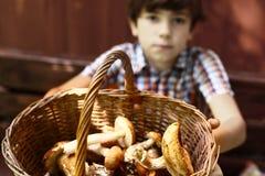muchacho del adolescente con las setas de la cesta Fotografía de archivo libre de regalías