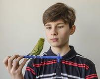 Muchacho del adolescente con un periquito verde Foto de archivo libre de regalías