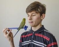 Muchacho del adolescente con un periquito verde Imagen de archivo
