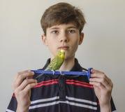 Muchacho del adolescente con un periquito verde Imagenes de archivo