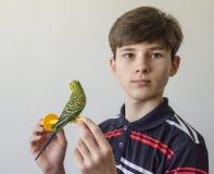 Muchacho del adolescente con un periquito verde Fotos de archivo libres de regalías