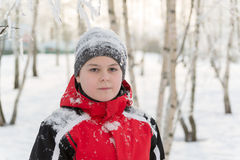 Muchacho del adolescente en parque del invierno Foto de archivo