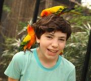 Muchacho del adolescente en parque zoológico asiático con los loros del ara en su cabeza Imagen de archivo libre de regalías