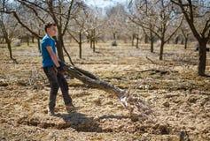 Muchacho del adolescente spring cleaning la huerta Foto de archivo