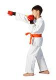 Muchacho del Aikido fotografía de archivo
