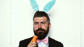Muchacho del conejito de pascua aislado en el fondo blanco El hombre barbudo en oídos del conejito come la zanahoria en el fondo  almacen de video