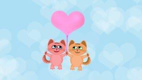 Muchacho del gato y mosca de la muchacha del gato