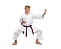 Muchacho del karate Foto de archivo libre de regalías