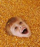 Muchacho del maíz Foto de archivo libre de regalías