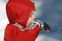 Muchacho del niño en la nieve Foto de archivo libre de regalías