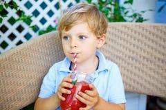 Muchacho del niño que bebe el smoothie sano de la fruta imágenes de archivo libres de regalías