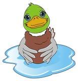 Muchacho del pato en el agua Imágenes de archivo libres de regalías