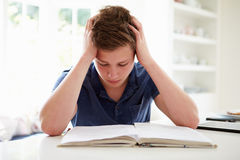Muchacho deprimido que estudia en casa Fotos de archivo libres de regalías