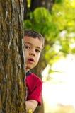 Muchacho detrás del árbol Imagenes de archivo