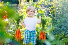 Muchacho divertido del niño con las zanahorias en jardín nacional Imagenes de archivo