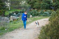 Muchacho elegante hermoso lindo que goza del parque colorido del otoño con su perro inglés rojo y blanco del mejor amigo del toro Imagenes de archivo