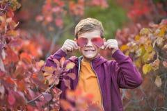 Muchacho elegante hermoso lindo que goza del parque colorido del otoño con su perro inglés rojo y blanco del mejor amigo del toro Fotos de archivo libres de regalías
