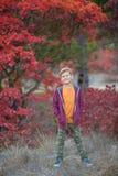 Muchacho elegante hermoso lindo que goza del parque colorido del otoño con su perro inglés rojo y blanco del mejor amigo del toro Imagen de archivo libre de regalías