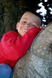Muchacho en árbol imagen de archivo