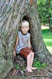 Muchacho en árbol de hueco Foto de archivo libre de regalías