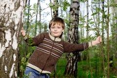 Muchacho en bosque del abedul del resorte Imagen de archivo libre de regalías