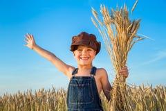 Muchacho en campo de trigo Fotos de archivo