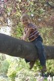 Muchacho en el árbol Fotografía de archivo libre de regalías