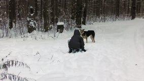 Muchacho en el bosque del invierno que juega con un perro almacen de metraje de vídeo