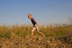 Muchacho en el campo de la cosecha del otoño Imagenes de archivo