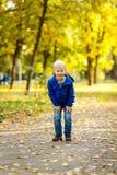 Muchacho en el parque del otoño Imagen de archivo