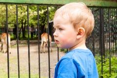 Muchacho en el parque zoológico Fotografía de archivo libre de regalías