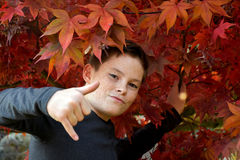 Muchacho en hojas de otoño Fotografía de archivo libre de regalías