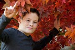Muchacho en hojas de otoño Foto de archivo