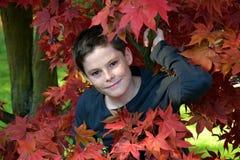 Muchacho en hojas de otoño Fotografía de archivo