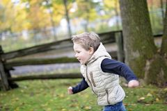 Muchacho en la estación del otoño en un parque Imagenes de archivo