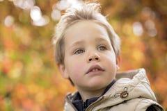 Muchacho en la estación del otoño en un parque Imagen de archivo libre de regalías
