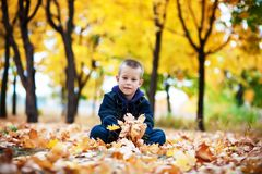 Muchacho en las hojas amarillas Fotos de archivo libres de regalías