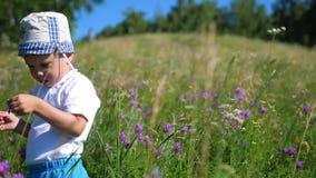 Muchacho en las mariposas de cogida del prado Día asoleado caliente Entretenimiento en el aire fresco Niñez feliz almacen de metraje de vídeo