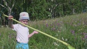 Muchacho en mariposas de cogida de un prado con una red Un día soleado caliente Entretenimiento en el aire fresco Niñez feliz metrajes