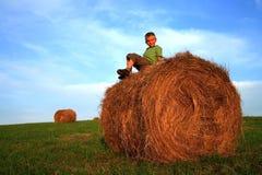 Muchacho en prado Foto de archivo libre de regalías