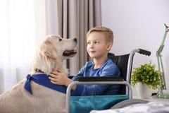 Muchacho en silla de ruedas con el perro del servicio imagenes de archivo
